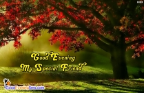 Good Evening Gf