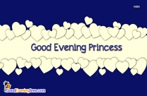 Good Evening Princess