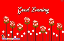 Good Evening with Rose Image