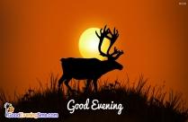Good Evening Scenery