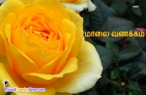 Good Evening Kavithai in Tamil