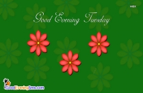 Good Evening Messages In English