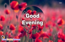 Good Evening Wishes Image