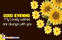 Good Evening Yellow Flower Image