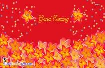 Good Evening Yellow Flower