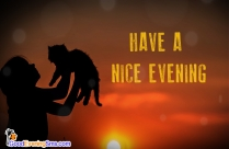 Have A Nice Evening Cat