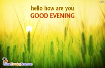Hello! How Are U? Good Evening