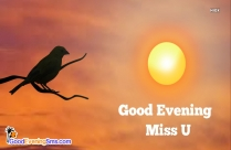 Miss U Good Evening Images
