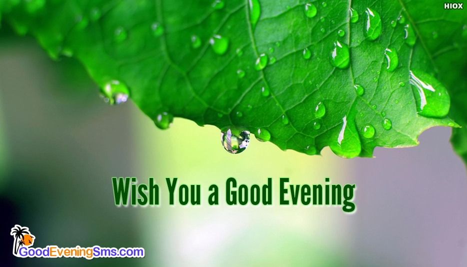 Wish You a Good Evening - Good Evening SMS for Everyone