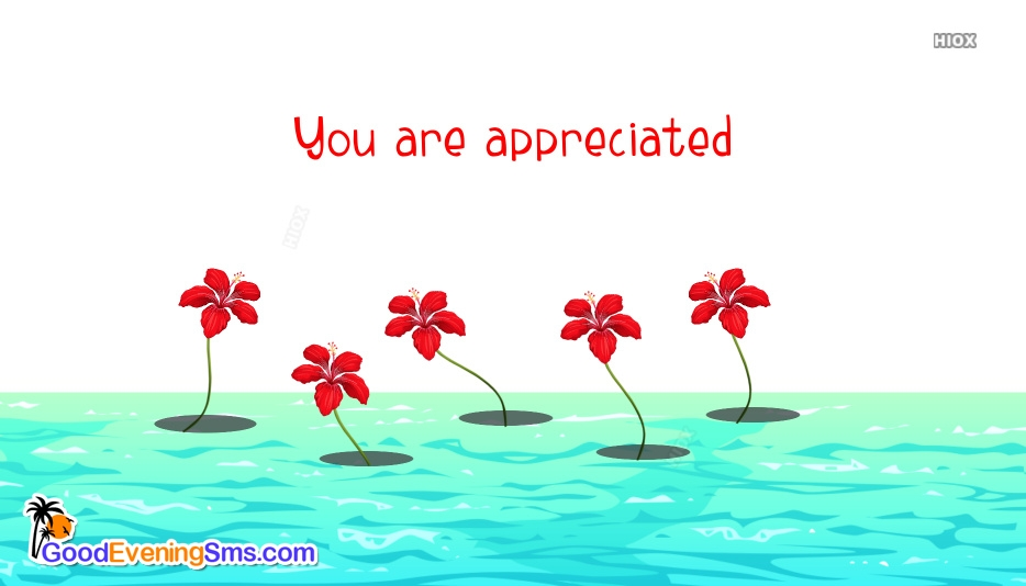 You Are Appreciated Card Images