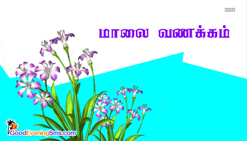 மாலை வணக்கம் | Good Evening Pictures In Tamil