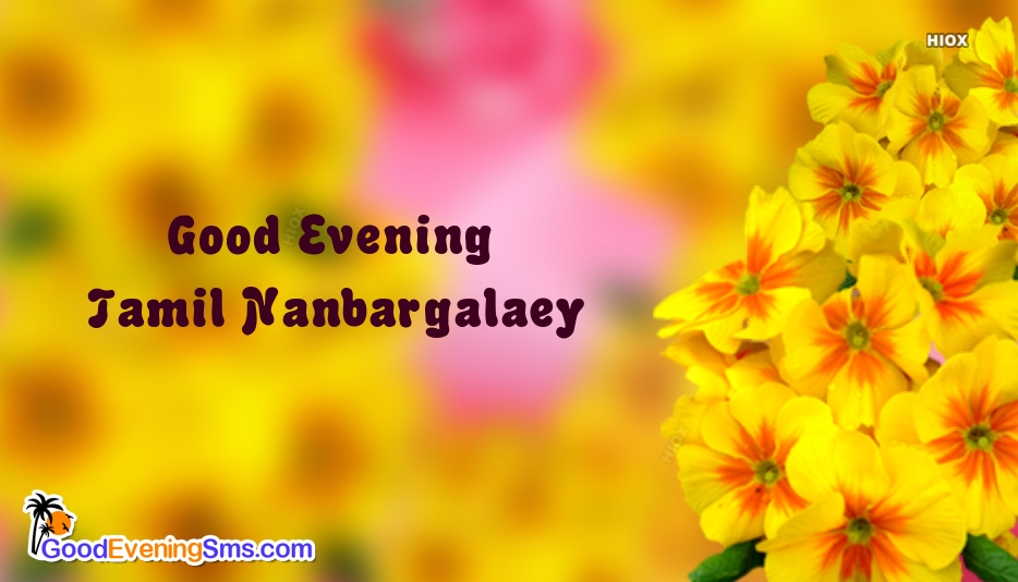 Good Evening Tamil Nanbargalaey